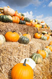 Pumpkins on a pale of straw Stock Photo