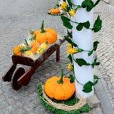 Pumpkins  paper-square Stock Photos