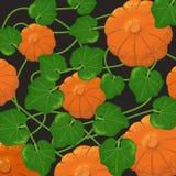 Pumpkins pattern with grain shadow stock illustration