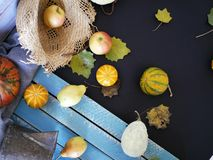 Pumpkins, pears, apples, gray fabric on a light wooden table, concept of cooking for a seasonal home holiday. Harvest, autumn, top view royalty free stock photos
