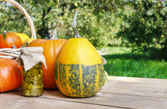Pumpkins and pickled vegetables in preserving glass Royalty Free Stock Images