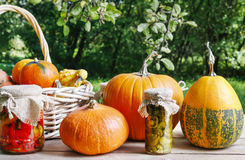 Pumpkins and pickled vegetables in preserving glass Royalty Free Stock Photo