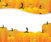 Pumpkins pile Stock Photography