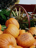 Pumpkins Piled by Wagon Wheel Stock Photo