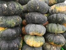 Pumpkins placed for sale. Heap of Thai grown pumpkins on retail display. These pumpkins are yellow inside. Close up horizontal photo of pile of pumpkins placed royalty free stock images
