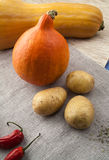 Pumpkins with potato and red chili peppers Stock Image