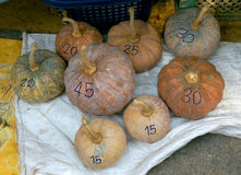 Pumpkins with price label. At fresh market Royalty Free Stock Images