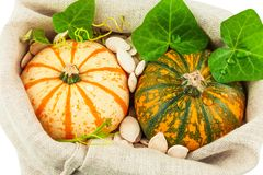 Pumpkins with pumpkin seeds and green leaves in sack. Macro view of pumpkins with pumpkin seeds and green leaves in sack Stock Image