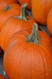 Pumpkins!-Pumpkins!-Pumpkins!-in a Row-1. Pumpkins on a wooden stand in a row Stock Images