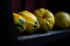 Pumpkins. On the self in Finland, at autumn Royalty Free Stock Photos