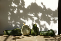 Pumpkins. Ripe pumpkins in an old monastery in the mountains of Bulgaria Stock Photos