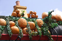 Pumpkins on Roof. Rooftop covered with pumpkins symbolizes Halloween Royalty Free Stock Image