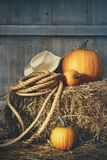 Pumpkins with rope and hat on hay Stock Images