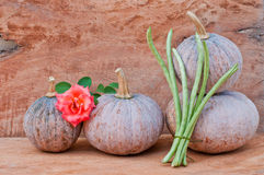 Pumpkins, rose and cowpea. Rustic autumn still life with mini pumpkins, rose and cowpea on old wood in background. Macro with shallow dof Royalty Free Stock Image