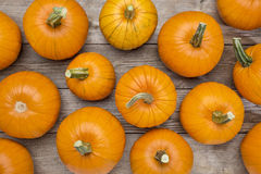 Pumpkins on a rustic wood Royalty Free Stock Photos