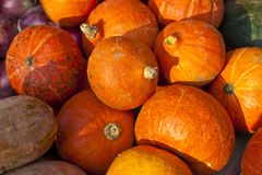 Pumpkins on sale Royalty Free Stock Photo