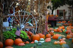 Pumpkins for sale. American farm and barns at autumn in Illinois. Halloween and autumn background Stock Images