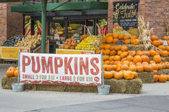 Pumpkins on sale Stock Photography