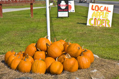 Pumpkins For Sale Outdoors Royalty Free Stock Images