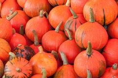 Pumpkins on sale stand in market. Royalty Free Stock Photo