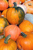 Pumpkins for sale by a street vendor Stock Images