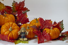 Pumpkins and Scarecrow Royalty Free Stock Photo
