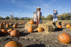 Pumpkins and Scarecrows Royalty Free Stock Photos