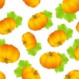 Pumpkins seamless Stock Images