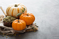 Pumpkins with seeds and sage leaves Royalty Free Stock Photo