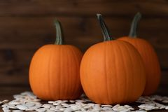 Pumpkins and seeds on wood royalty free stock photos