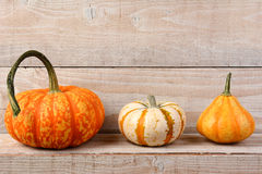 Pumpkins on Shelf Still Life Royalty Free Stock Photography