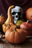Pumpkins and skull for Halloween royalty free stock images