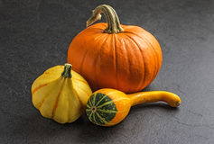 Pumpkins on slate plate Stock Photos
