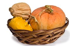 Pumpkins in a small basket on a white background Royalty Free Stock Photography