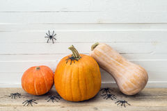 Pumpkins with spider on a background of white boards. Space for Stock Image