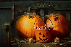 Pumpkins and spiders with candles on bench Stock Image