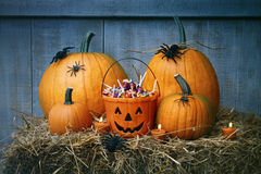 Pumpkins, spiders and Halloween candy Stock Photos