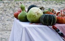 Pumpkins and splashes. Pumpkins and splashes in daylight, outdoors Stock Photos