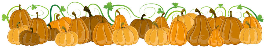 Pumpkins with sprouts and leaves Royalty Free Stock Photos
