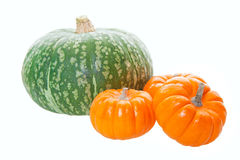 Pumpkins & Squash Stock Images