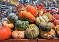 Pumpkins and squash for sale in Stock Image