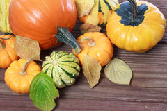 Pumpkins and squashes and autumn leaves Stock Photography