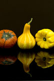 Pumpkins and squashes Royalty Free Stock Photo