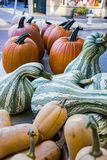 Pumpkins and Squashes stock images