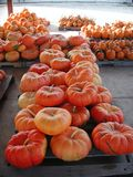 Pumpkins stacked on pallets after harvest stock photo