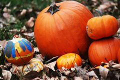 Pumpkins stacked together in the fall leaves Stock Photo