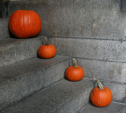 Pumpkins on steps Royalty Free Stock Photo