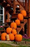 Pumpkins on steps Stock Images