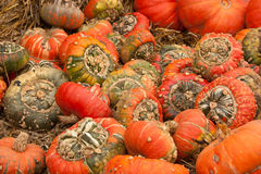 Pumpkins on Straw Royalty Free Stock Image