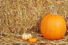 Pumpkins on straw Stock Photos